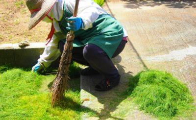 北九州市シルバー人材センターのまとめ【格安で植木の手入れや庭の除草!料金も掲載】